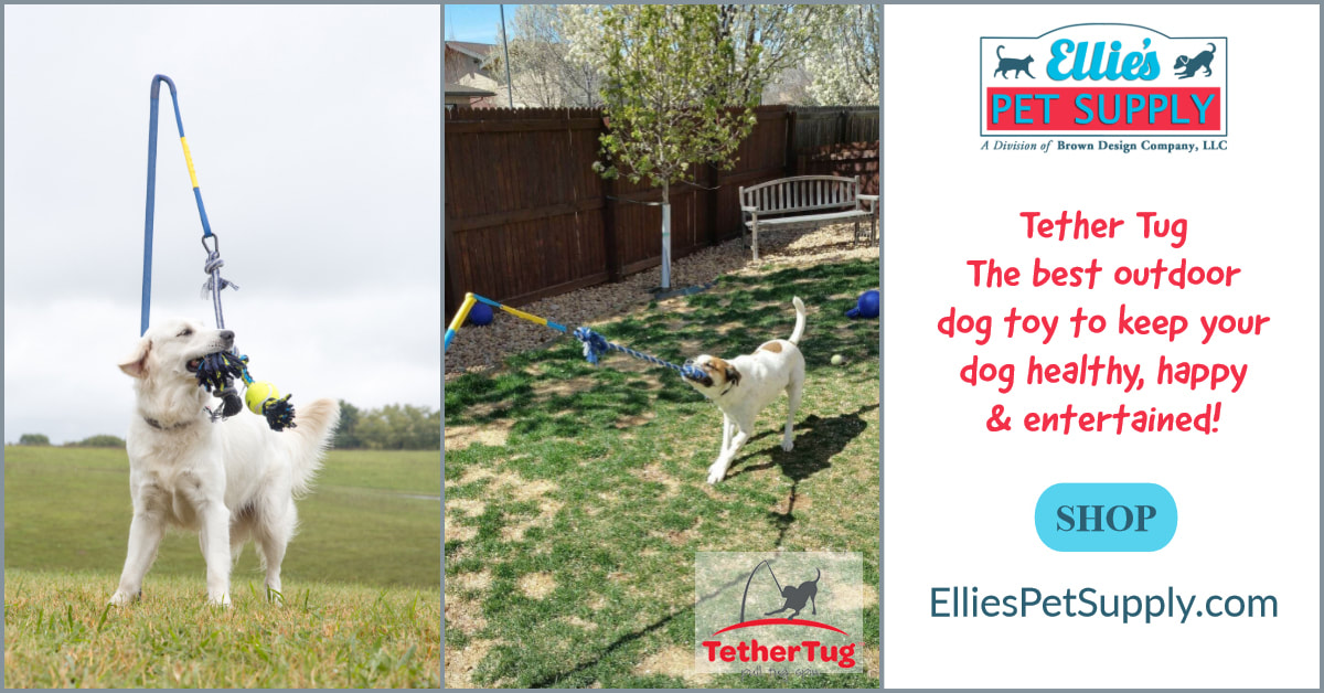 Tether Tug the best outdoor dog toy to keep your dog healthy happy and entertained Shop Ellies Pet Supply