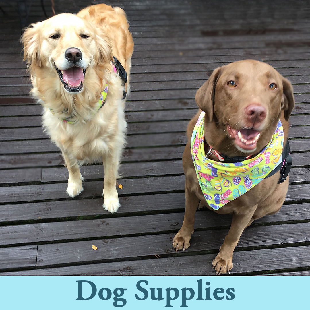 Shop Dog and Puppy Supplies at Ellie's Pet Supply
